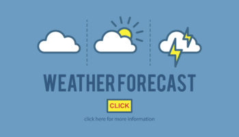 Illustration of weather forecast vector